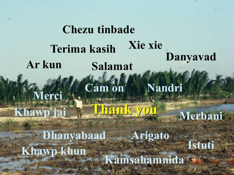 Thank you Chezu tinbade Xie xie Terima kasih Danyavad Ar kun Salamat