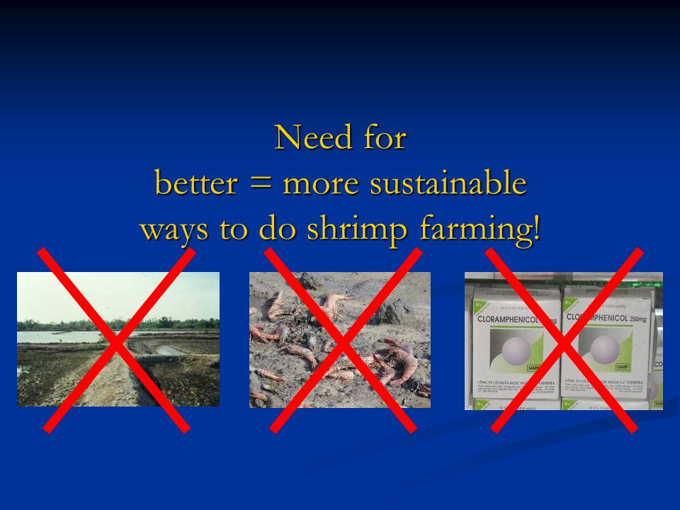 Need for better = more sustainable ways to do shrimp farming!