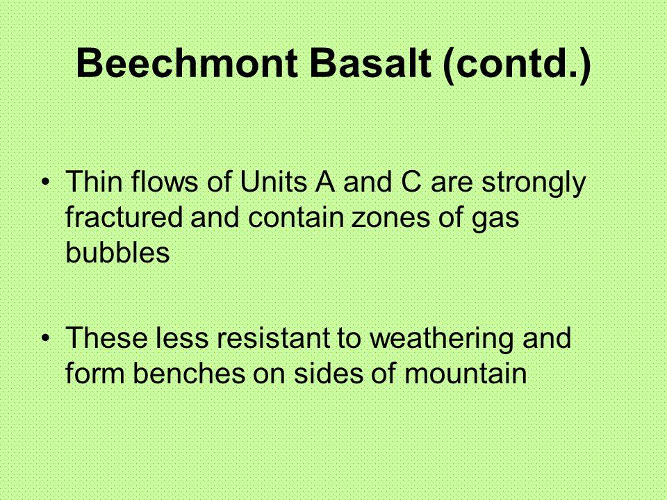 Beechmont Basalt (contd.)