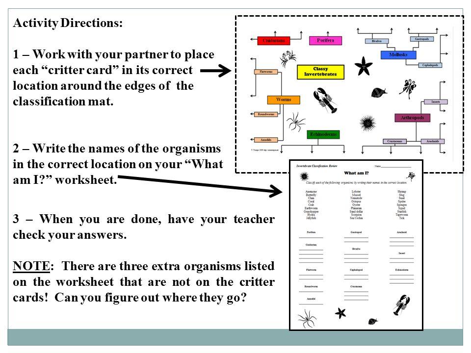 Printable Worksheets five kingdoms of living things worksheets : Classification of Living Things - ppt video online download