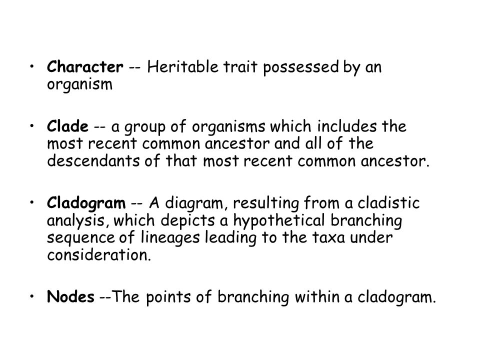 Character -- Heritable trait possessed by an organism