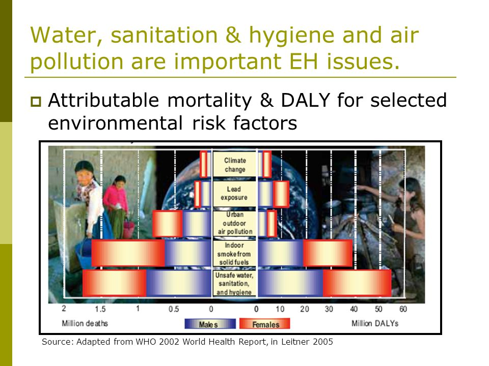 Water, sanitation & hygiene and air pollution are important EH issues.