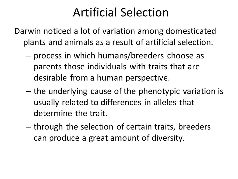 Artificial Selection Darwin noticed a lot of variation among domesticated plants and animals as a result of artificial selection.