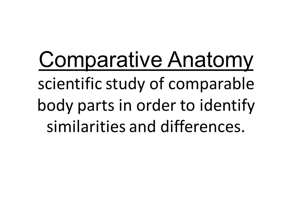 Comparative Anatomy scientific study of comparable body parts in order to identify similarities and differences.