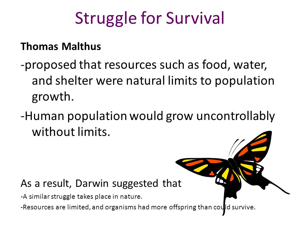 Struggle for Survival Thomas Malthus. -proposed that resources such as food, water, and shelter were natural limits to population growth.