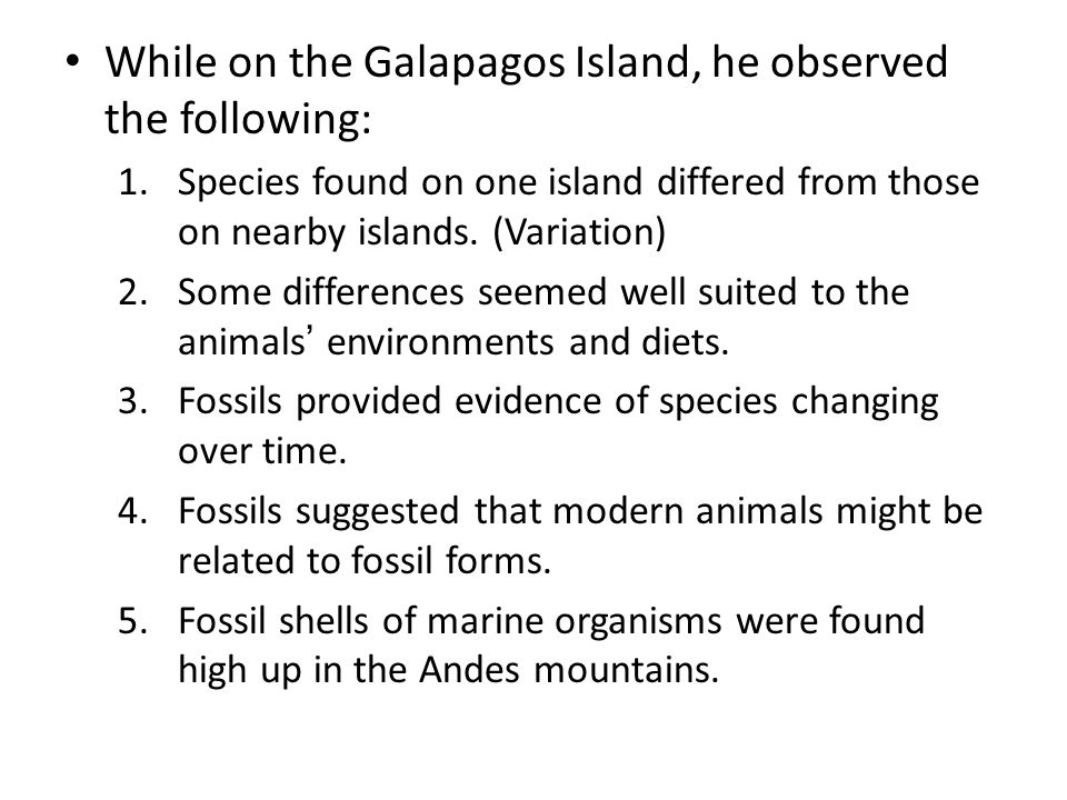 While on the Galapagos Island, he observed the following: