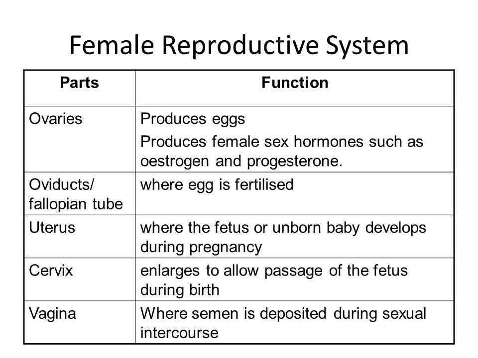 Reproduction In Humans Ppt Video Online Download