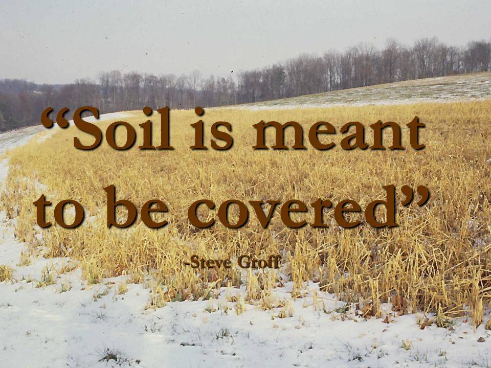 Cover crops and conservation tillage ppt video online for What is meant by soil
