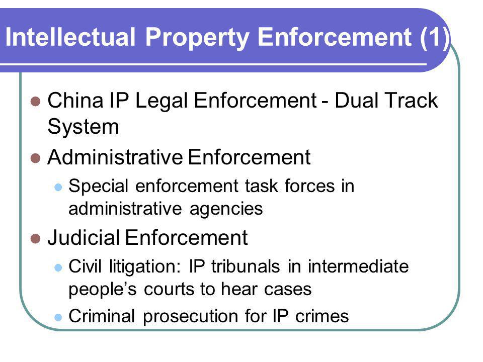 Intellectual Property Enforcement (1)