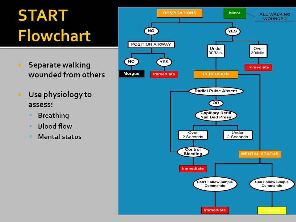 mis 302 flowchart The course descriptions catalog describes all undergraduate and graduate courses offered by michigan state university the searches below only return course versions fall 2000 and forward.