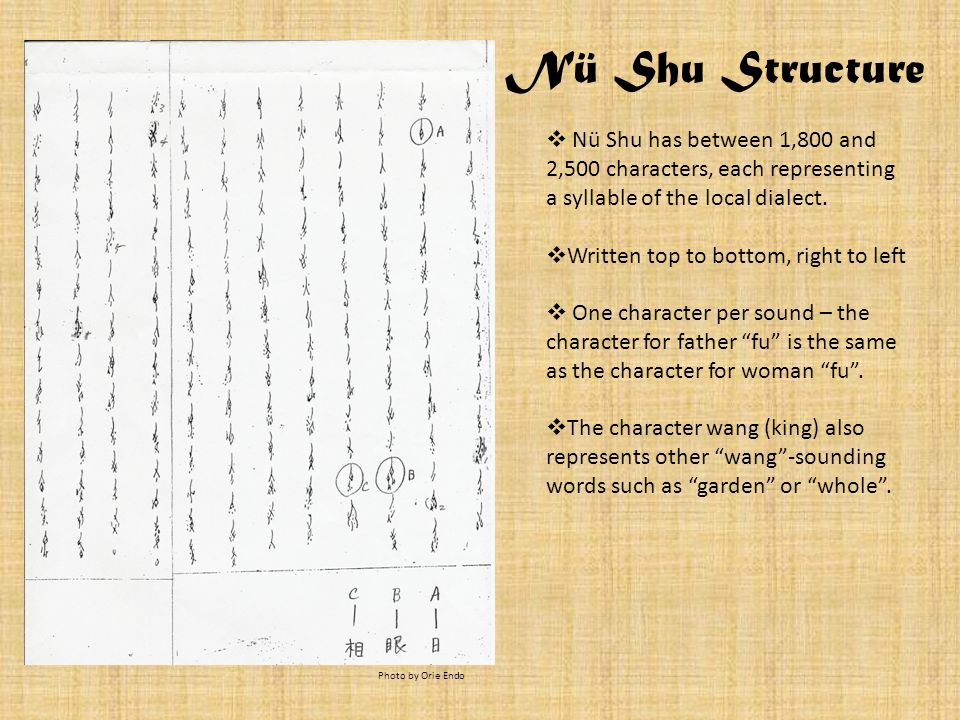 Nü Shu Structure Nü Shu has between 1,800 and 2,500 characters, each representing a syllable of the local dialect.