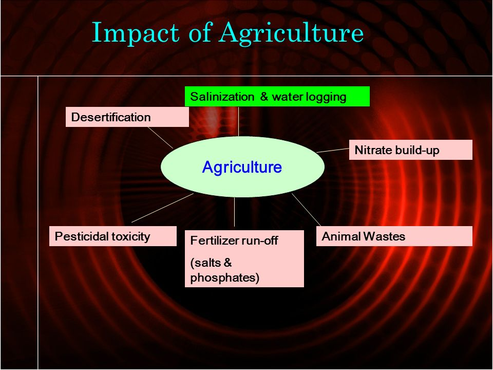 impact of human activities on environment pdf