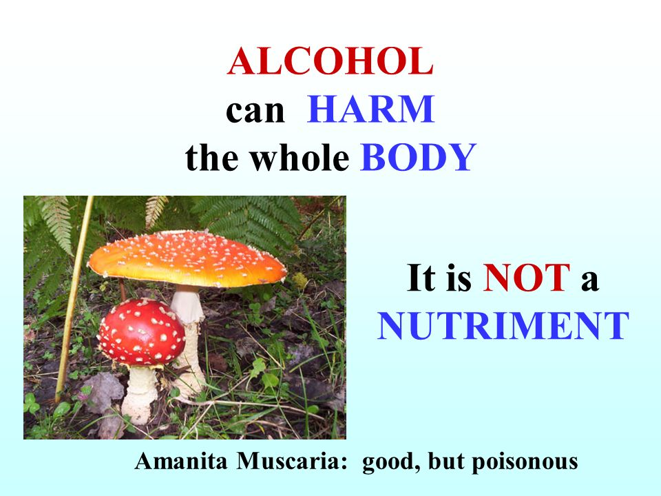 ALCOHOL can HARM the whole BODY