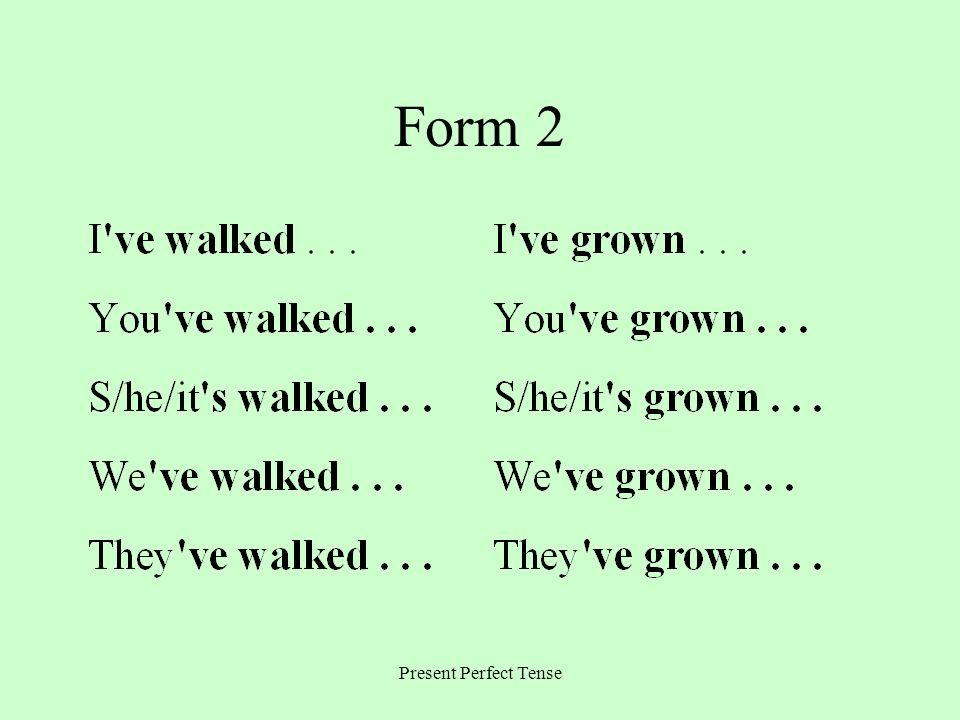 Form 2 Present Perfect Tense