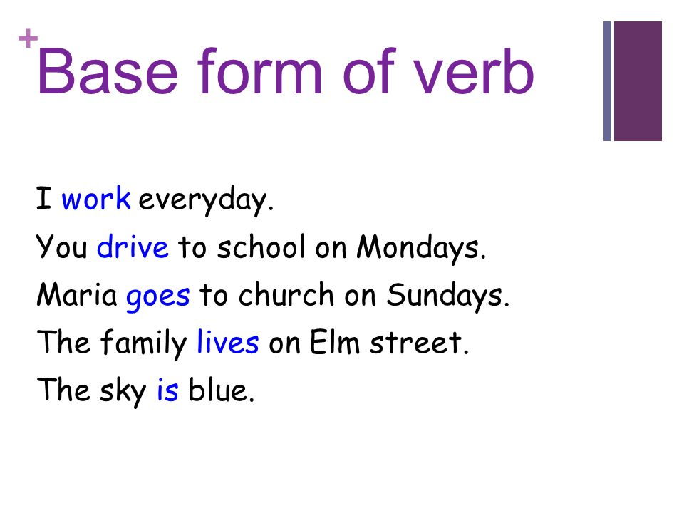 Base form of verb I work everyday. You drive to school on Mondays.