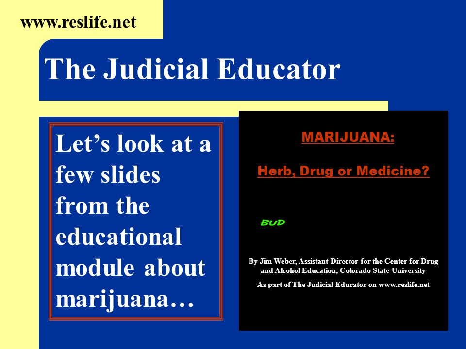 As part of The Judicial Educator on
