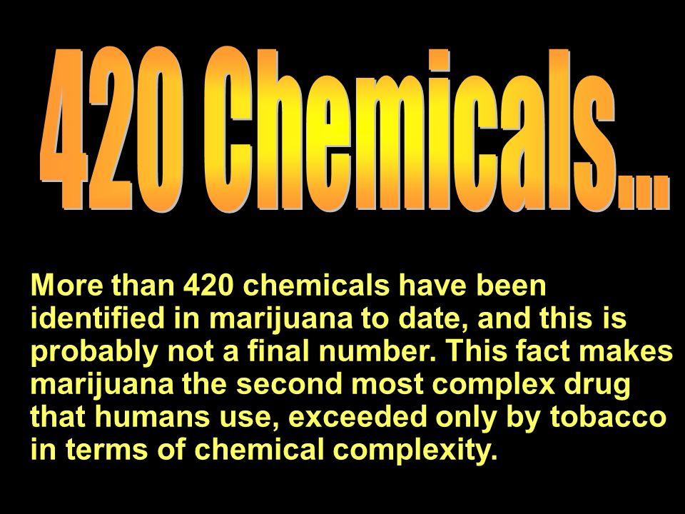420 Chemicals...