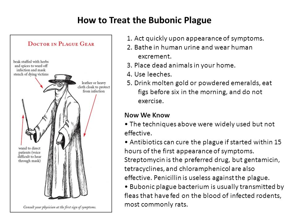 How to Treat the Bubonic Plague