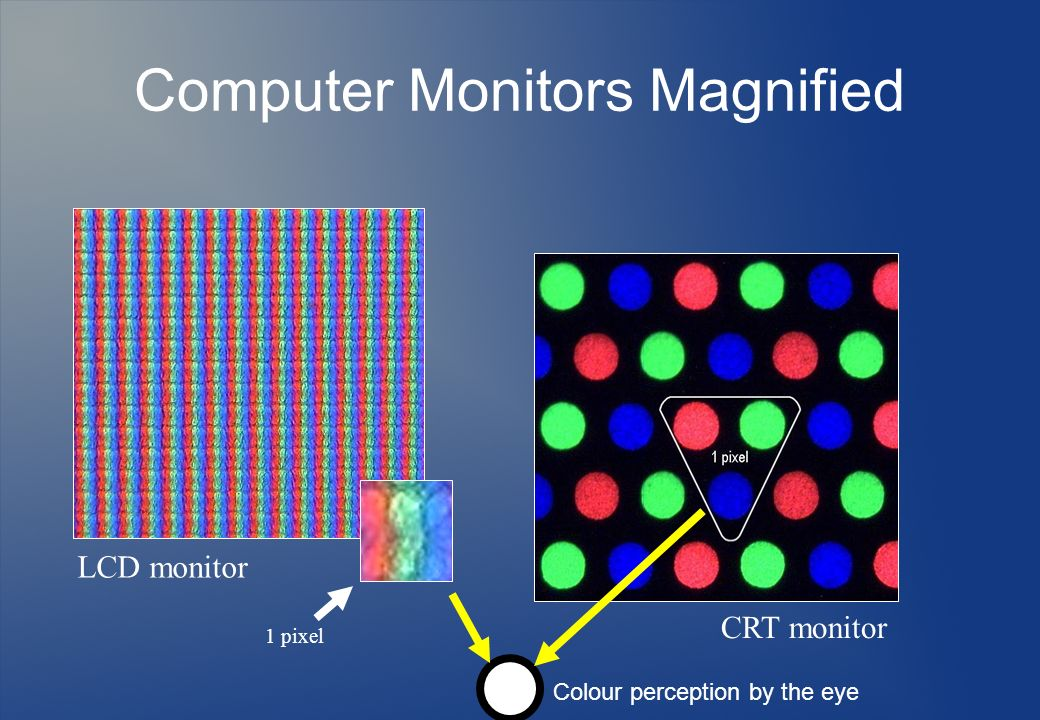Computer Monitors Magnified
