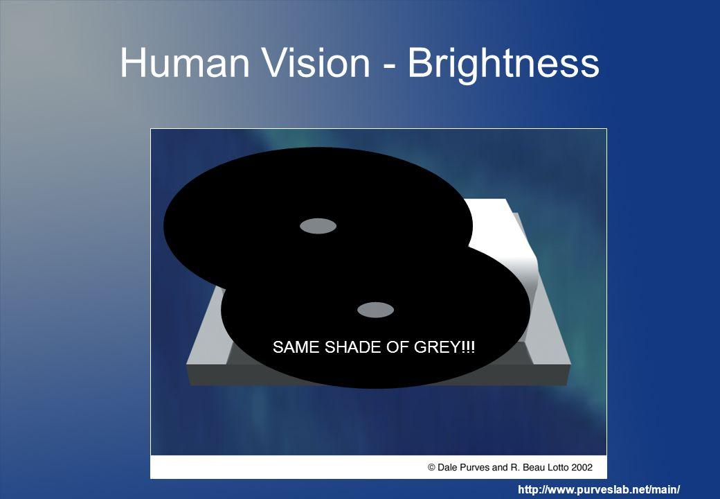 Human Vision - Brightness