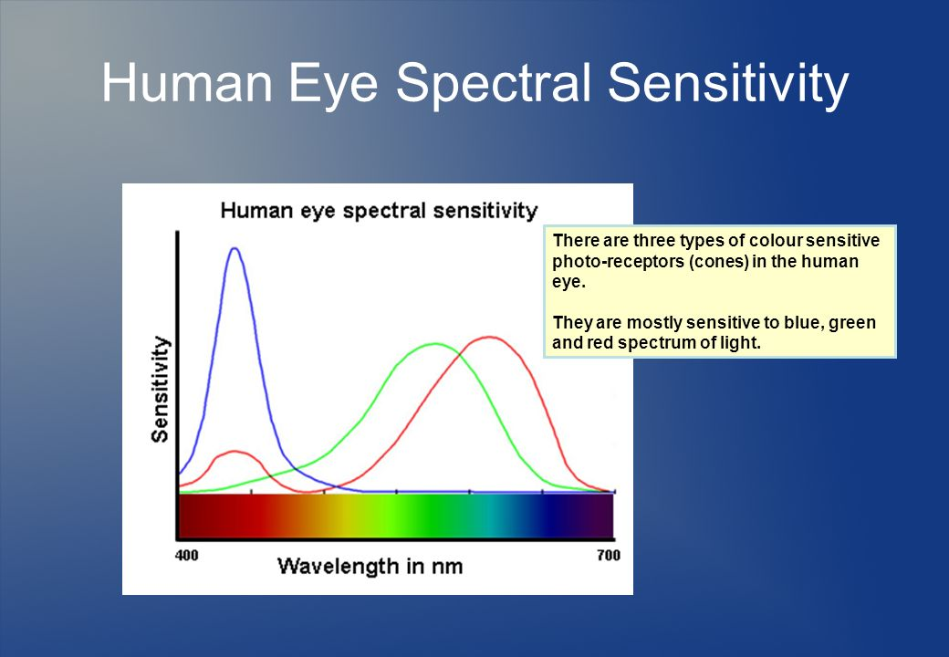 Human Eye Spectral Sensitivity