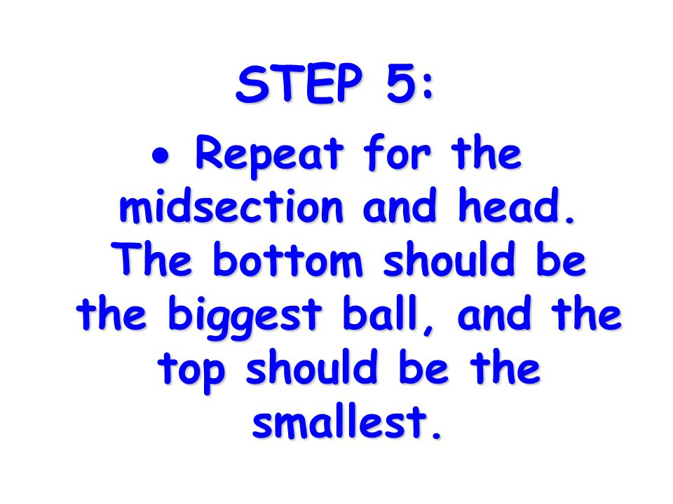 STEP 5: Repeat for the midsection and head.
