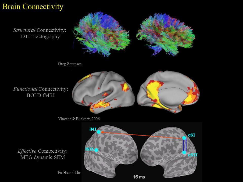 Interventional Mri Magnetoencephalography Ppt Video
