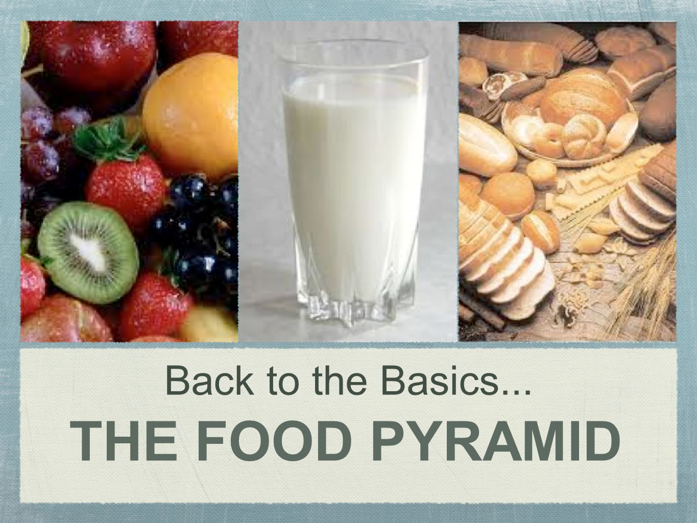Back to the Basics... THE FOOD PYRAMID
