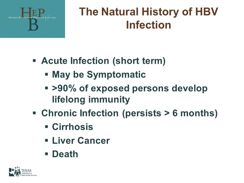 The Natural History of HBV Infection