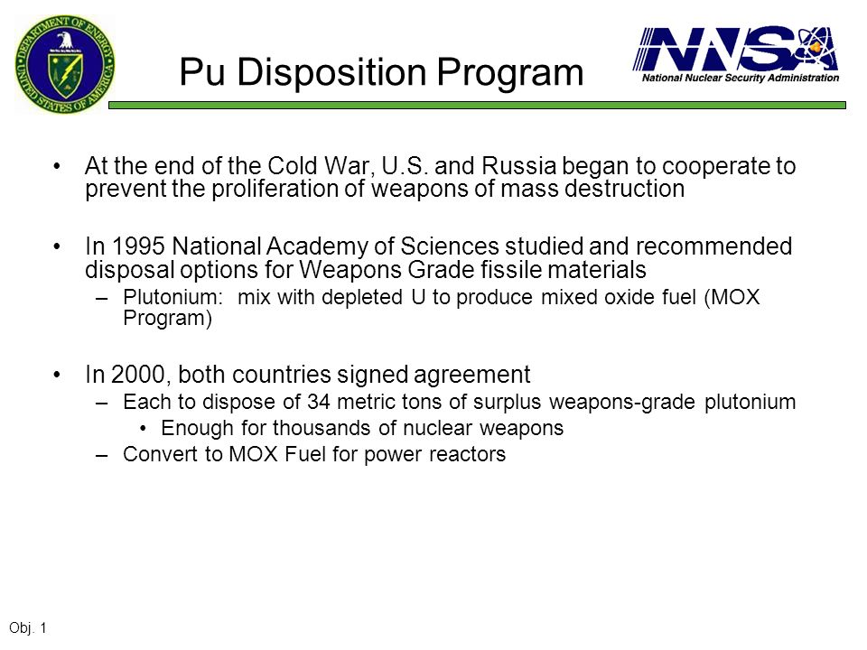 Pu Disposition Program