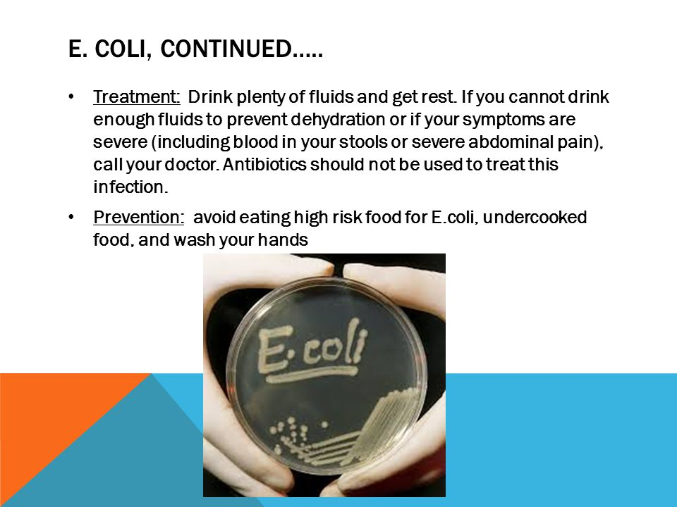 e coli on bathroom surfaces Effectiveness of domestic antibacterial products in decontaminating  on washable kitchen and bathroom surfaces, sinks and  number of e coli remaining on various surfaces at 30, 60.