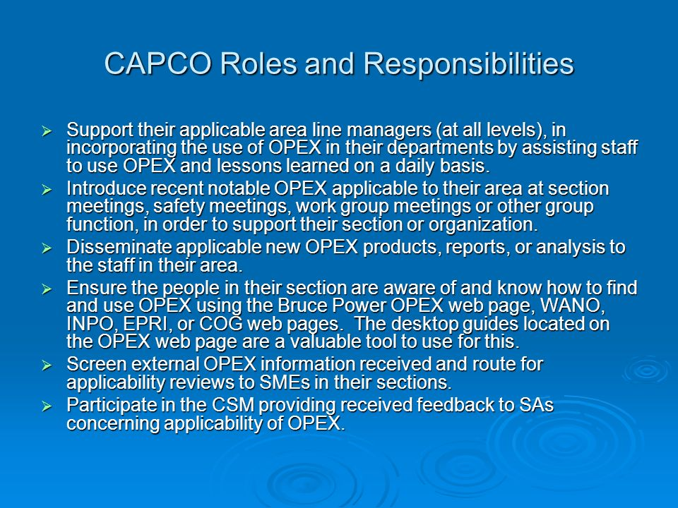 CAPCO Roles and Responsibilities