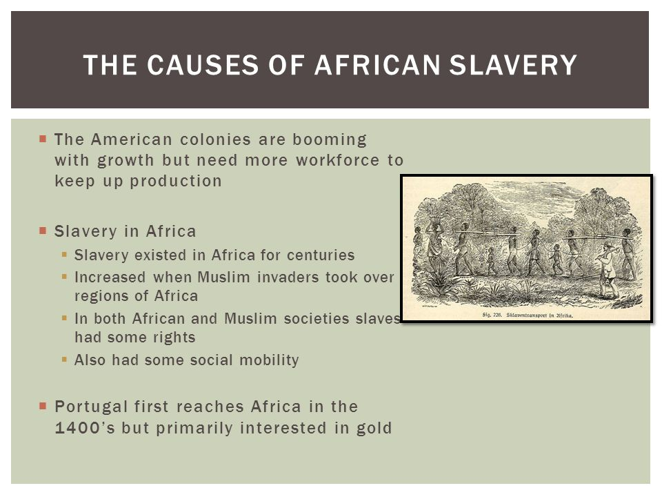 an analysis of the african slaves and the escape from the plantations If they survived the voyage from africa then life on the west indian plantations  was harsh some slaves resisted by rebelling or trying to escape part of history.