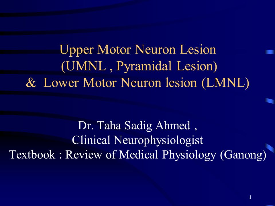 Upper motor neuron lesion vs lower ppt for Lower motor neuron diseases