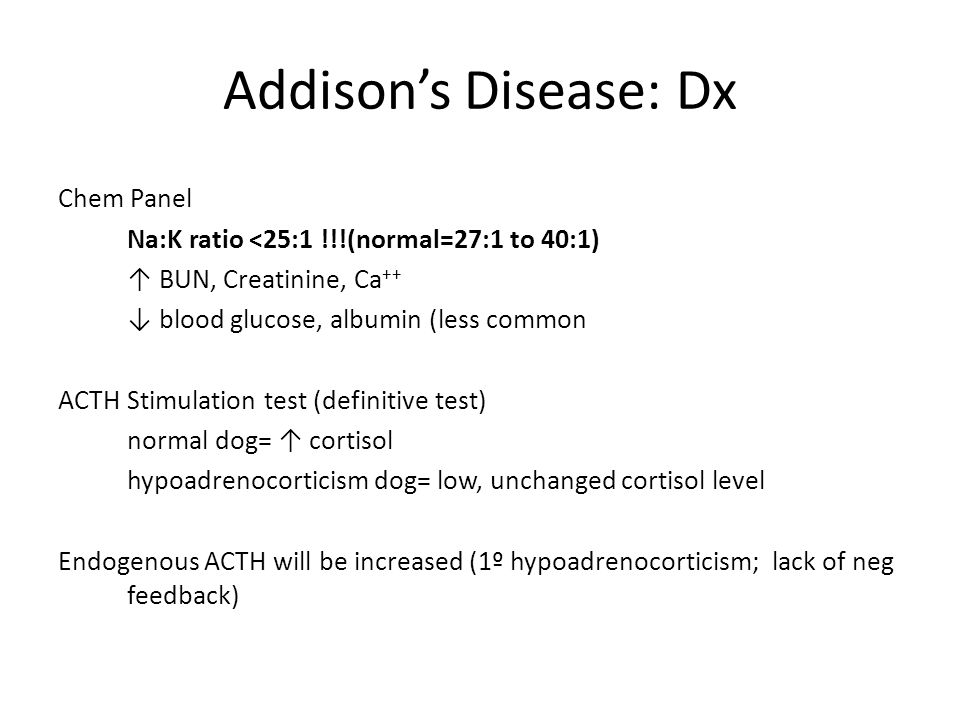 Addison S Disease Dog Acth