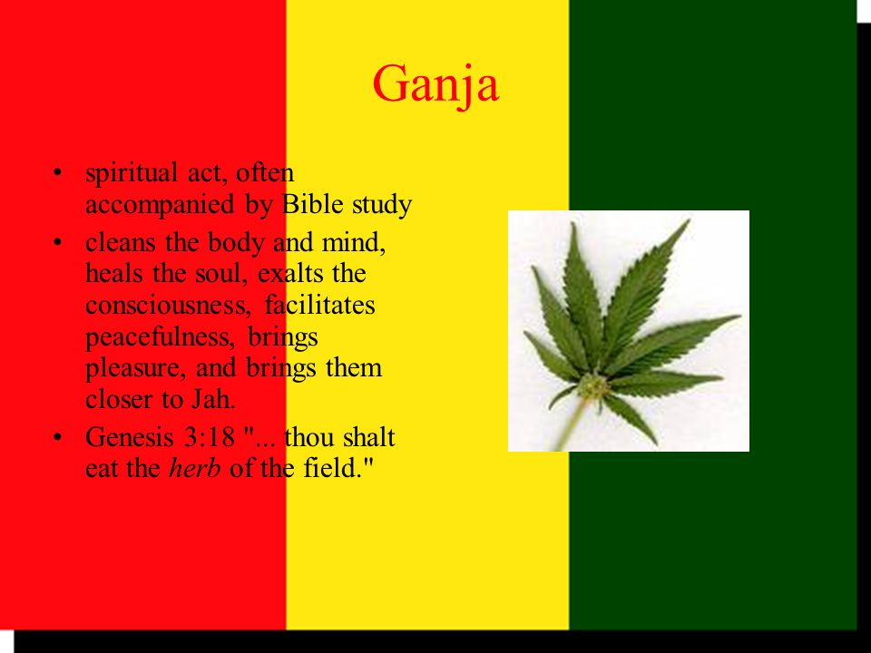 Ganja spiritual act, often accompanied by Bible study