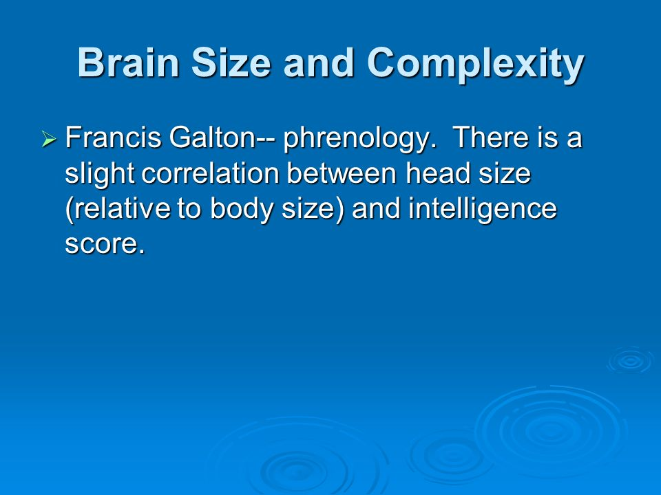Brain Size and Complexity
