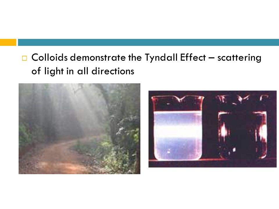 Colloids demonstrate the Tyndall Effect – scattering of light in all directions