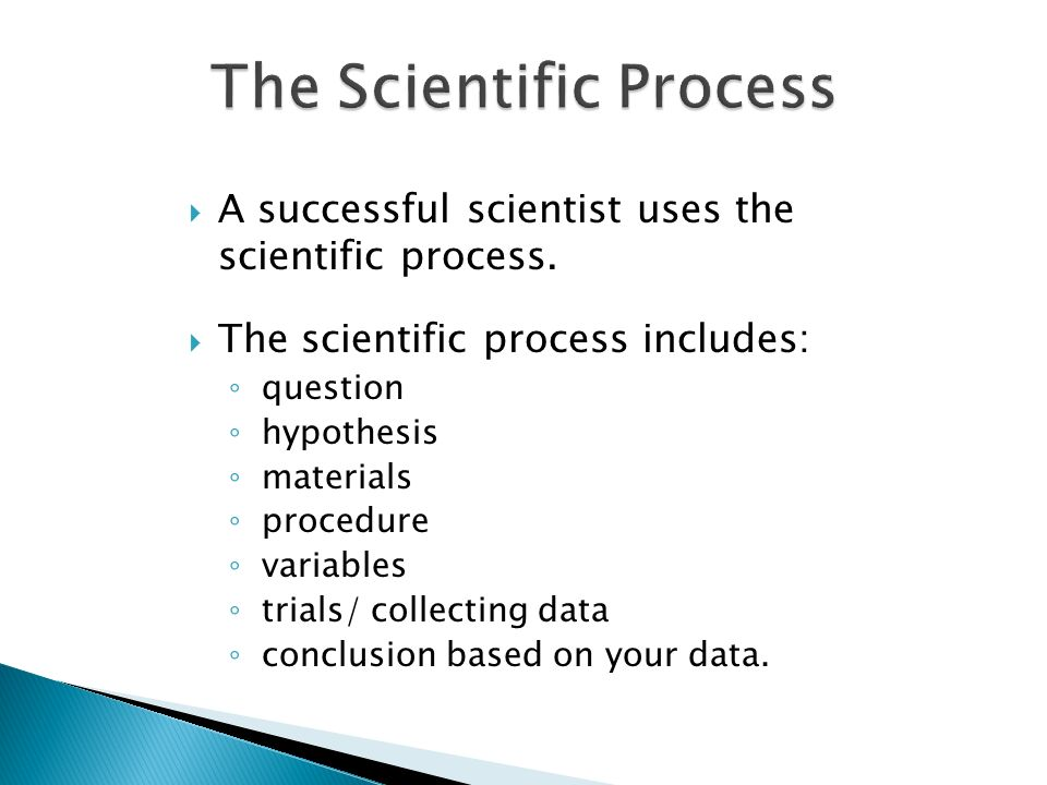 how to write procedure for science project