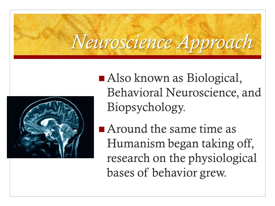 behavioral neuroscience study guide 07022017 find helpful customer reviews and review ratings for study guide for foundations of behavioral neuroscience at amazoncom read.