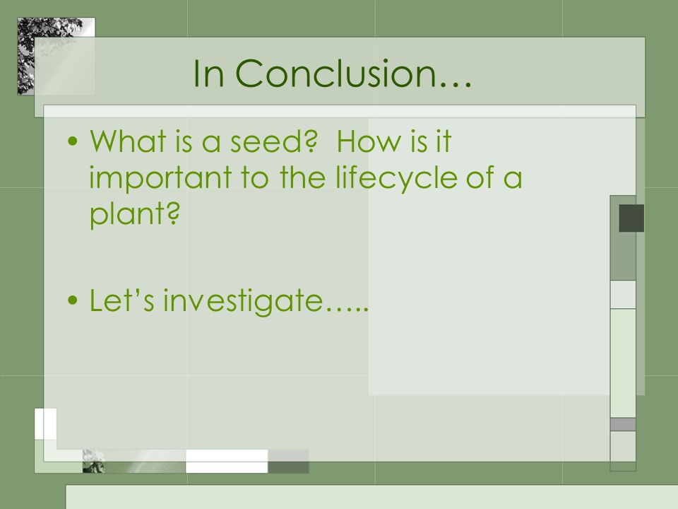 In Conclusion… What is a seed. How is it important to the lifecycle of a plant.