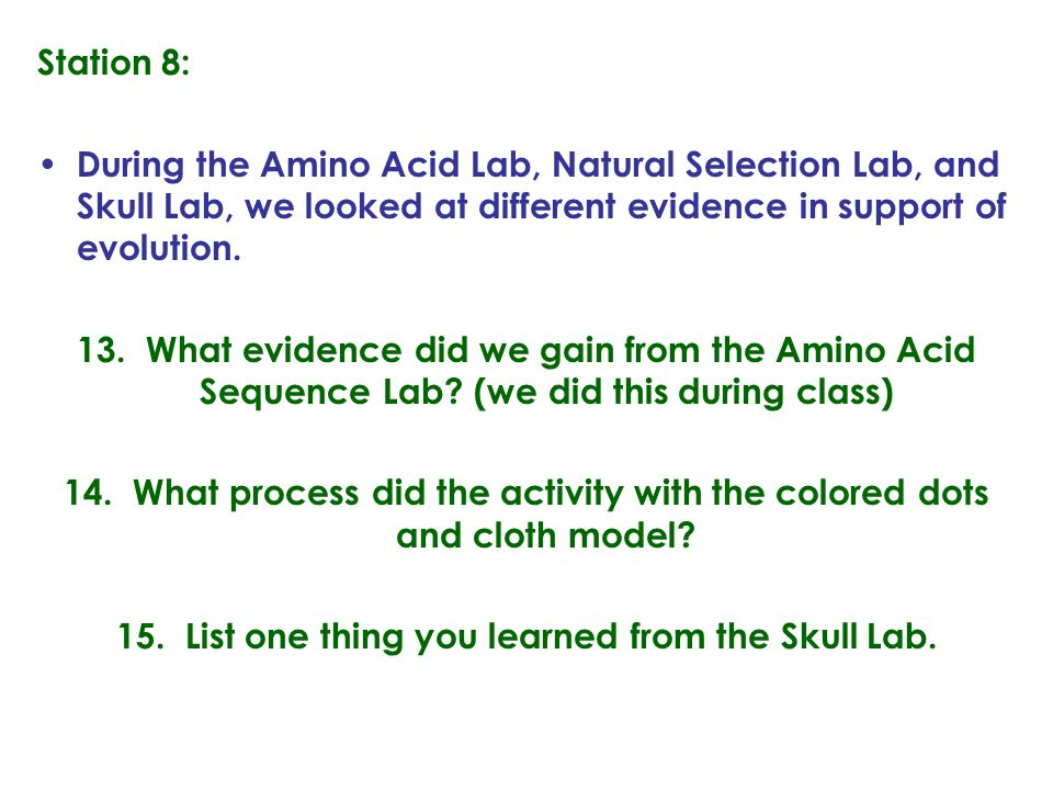 15. List one thing you learned from the Skull Lab.