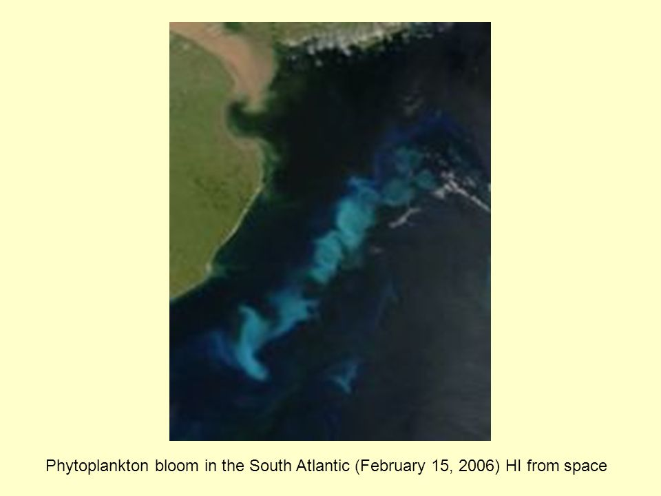 Phytoplankton bloom in the South Atlantic (February 15, 2006) HI from space
