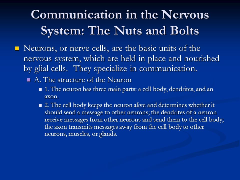 Communication in the Nervous System: The Nuts and Bolts