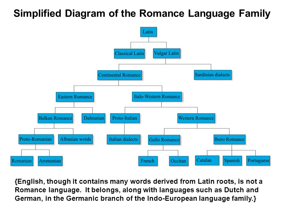 Simplified Diagram of the Romance Language Family