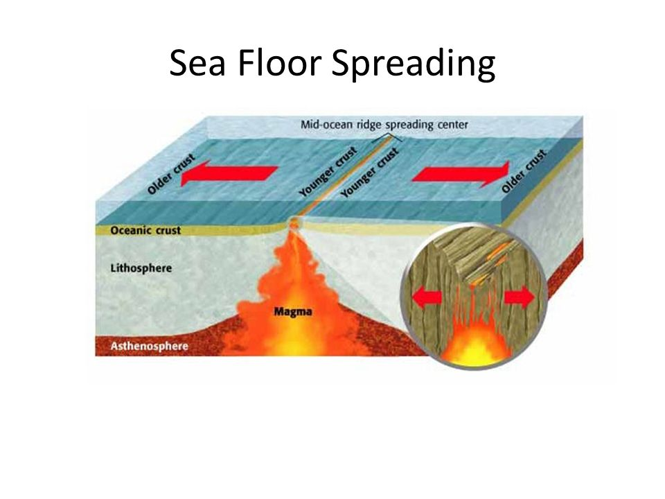 Plate tectonics ppt video online download for Evidence for sea floor spreading has come from