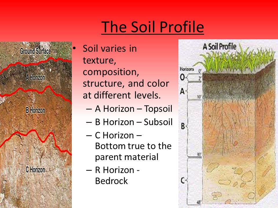 Unit 1 notes the geosphere ppt video online download for Soil composition