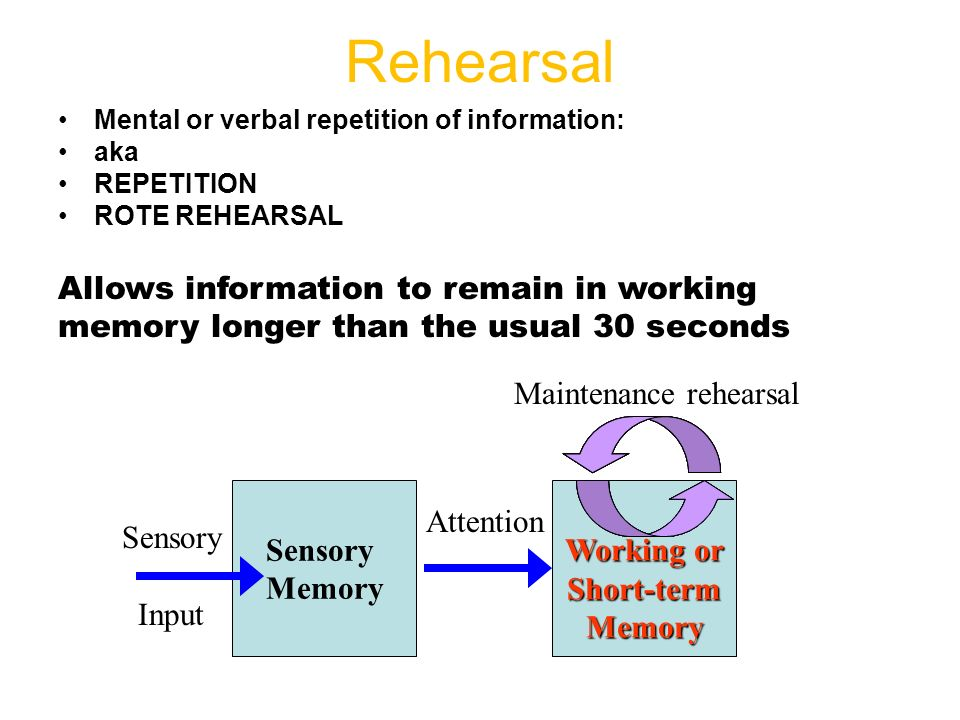 maintenance rehearsal notes The active nature of memory is also evident in the fact that mere maintenance  rehearsal does little to promote long-term storage according to many studies,  how.