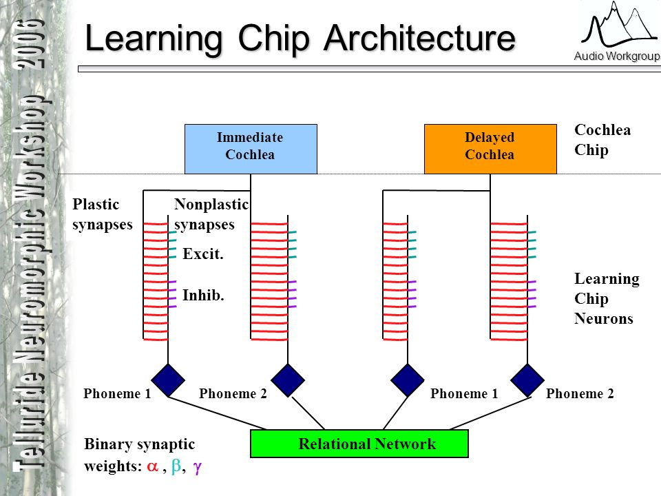 Learning Chip Architecture