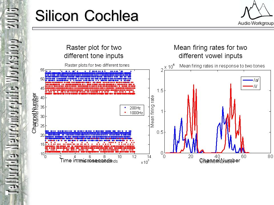 Silicon Cochlea Raster plot for two different tone inputs